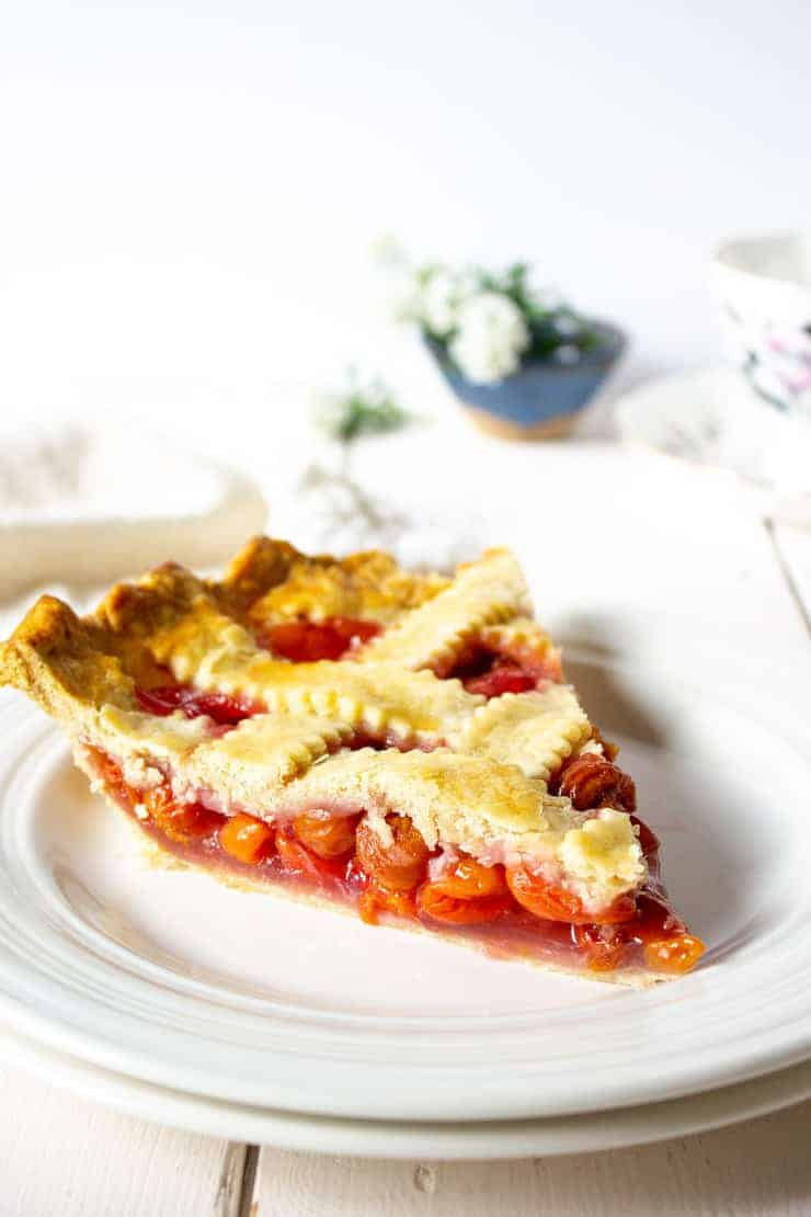 A slice of pie on a small white plate.