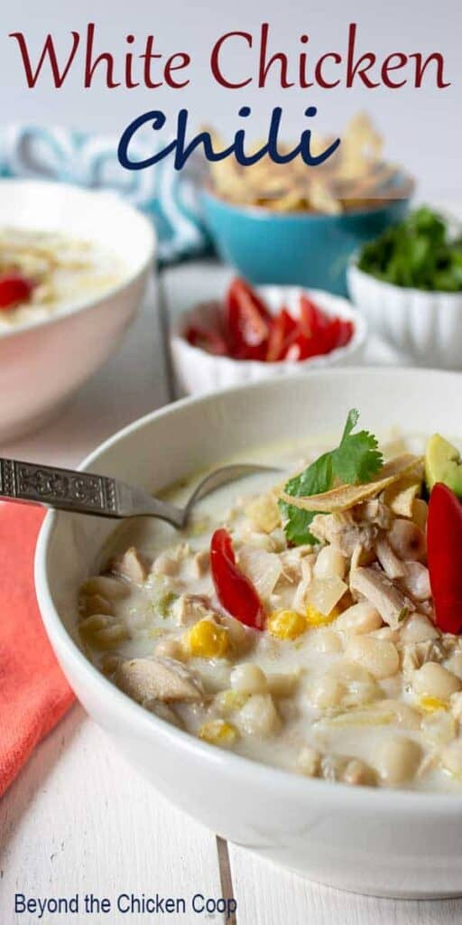 A bowl of white chicken chili topped with fresh tomatoes and cilantro.