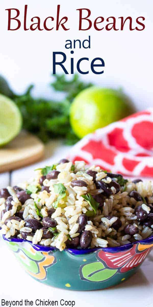 A colorful bowl filled with black beans, rice and topped with fresh green herbs.