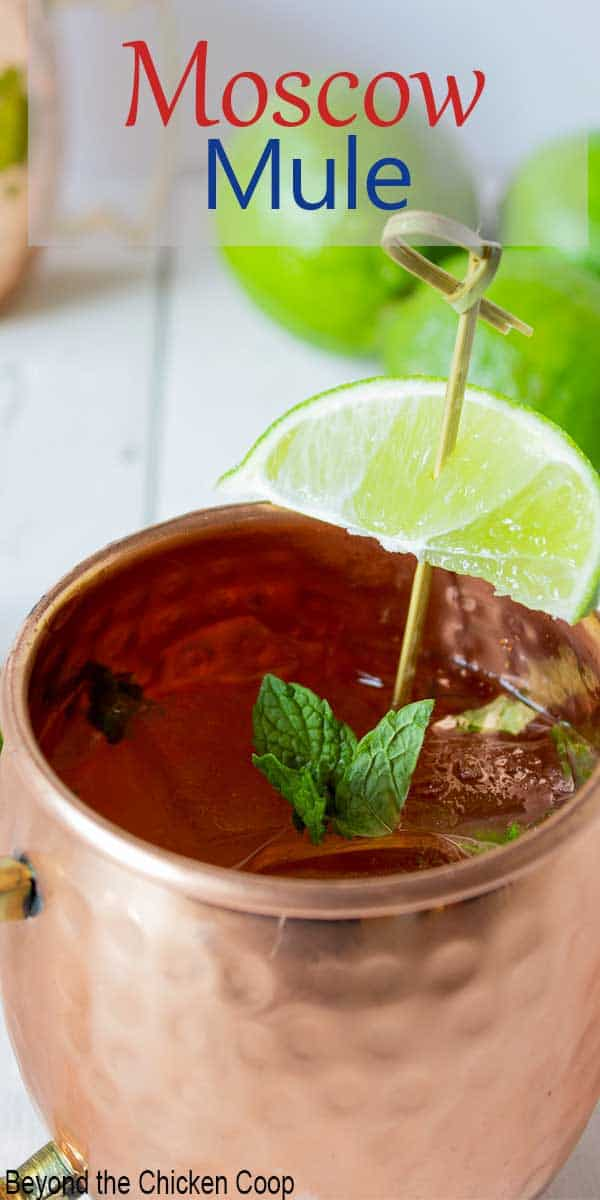 A copper mug filled with a clear beverage and topped with a fresh sprig of mint.