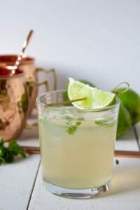 Moscow Mule made with ginger ale, fresh lime juice, vodka and mint.