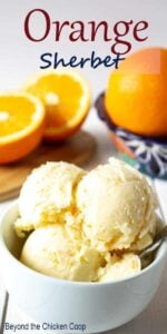 Scoops of orange sherbet in a small white bowl.