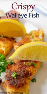 Crispy fried fish topped with fresh lemon wedges and chopped parsley.