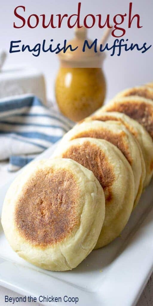 Sourdough English Muffins on a white platter.