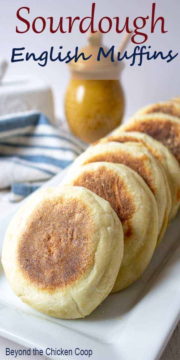 Sourdough English Muffins on a white platter.