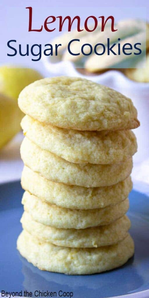 A tall stack of cookies on a blue plate.