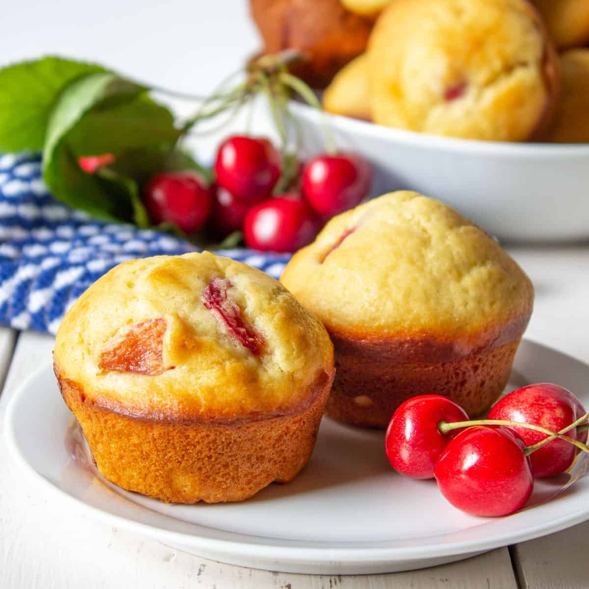 Two cherry muffins on a small white plate.