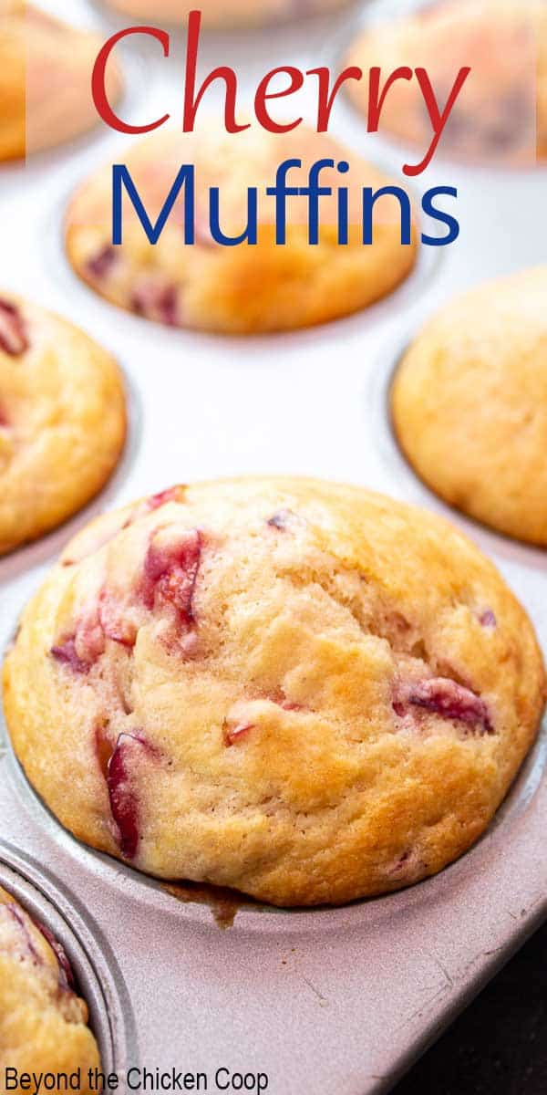 Cherry muffins in a baking tin.