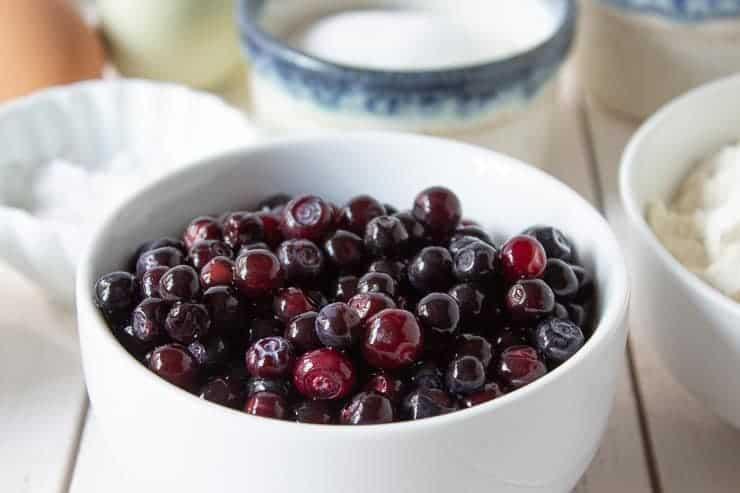A bowlful of fresh huckleberries.