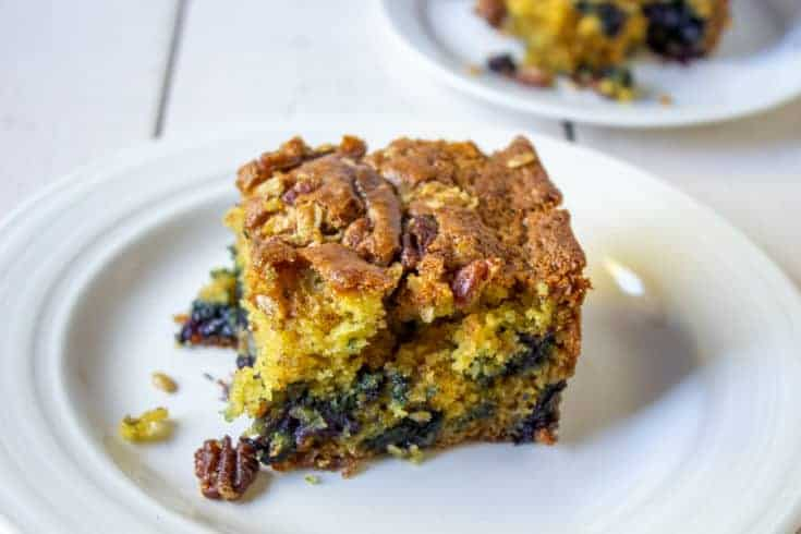 Blueberry Banana Coffee Cake with Pecan Crumble Topping