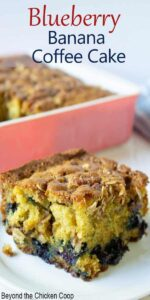 Coffee cake with blueberries at the bottom of the cake and topped with pecans.