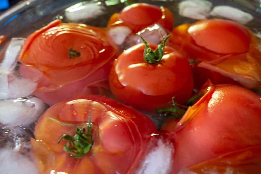 Fresh tomatoes in an ice water bath.