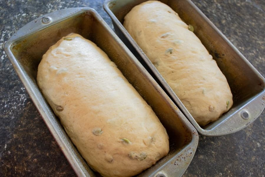 Two loaves of uncooked bread in bread pans.