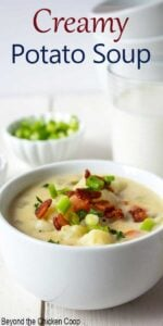 A bowl filled with potato soup topped with crispy bacon bits.