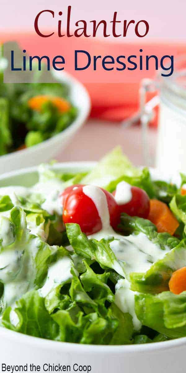 A green salad with tomatoes topped with a creamy salad dressing.