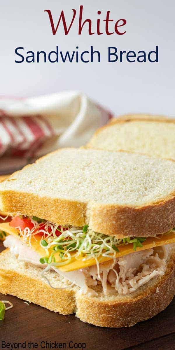 A sandwich filled with turkey, sprouts, cheese and tomatoes.