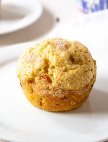 One rhubarb muffin sitting on a small white plate.
