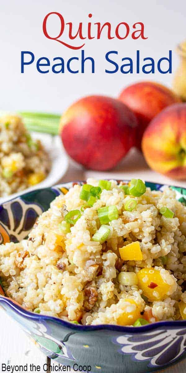 Quinoa salad with peaches and brown rice in a bowl.