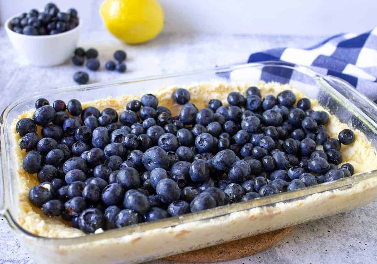 Blueberries on top of a shortbread crust.