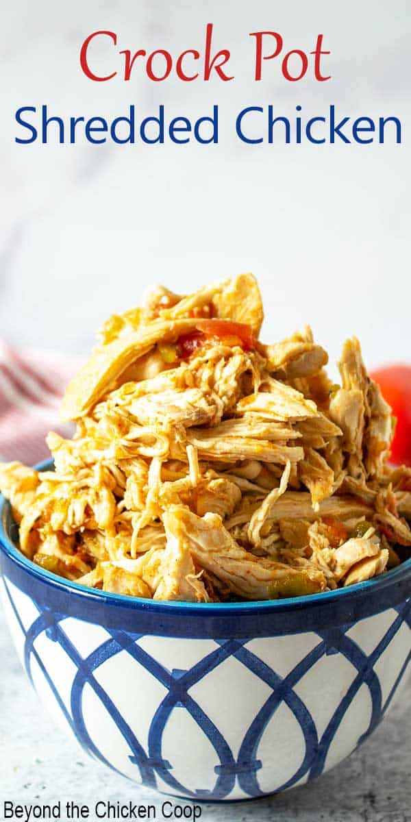 A bowl filled with shredded chicken and bits of tomatoes.