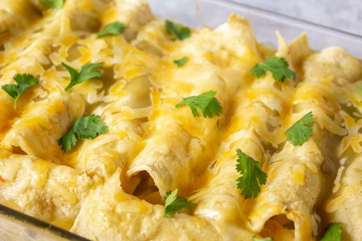 Cheesy enchiladas topped with fresh cilantro.