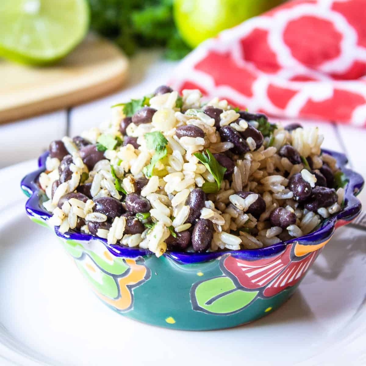 A colorful bowl filled with brown rice and black beans topped with fresh cilantro.