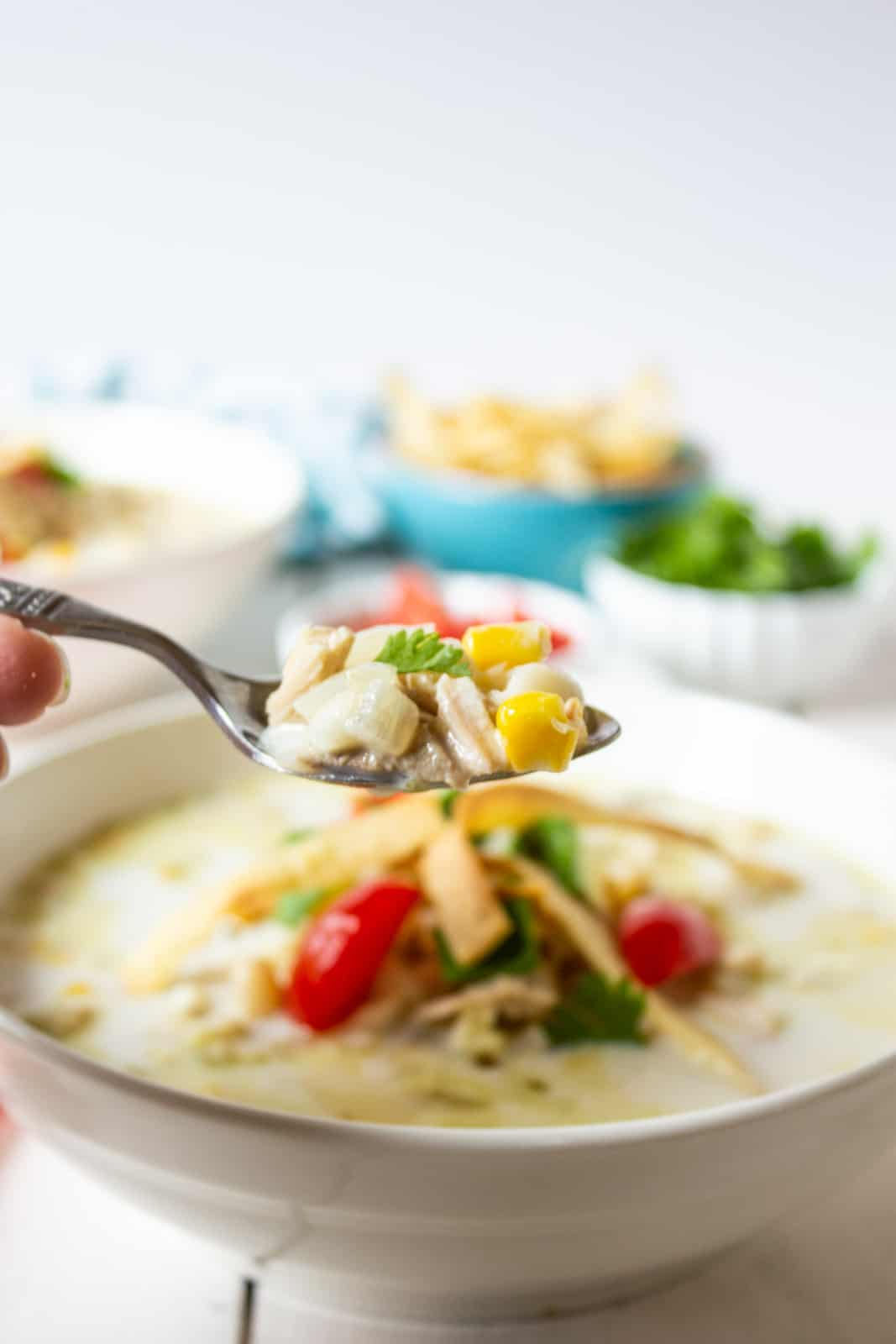 A spoonful filled with white beans and chunks of chicken in a creamy broth.