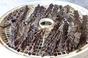 A dehydrator tray filled with wild game jerky.