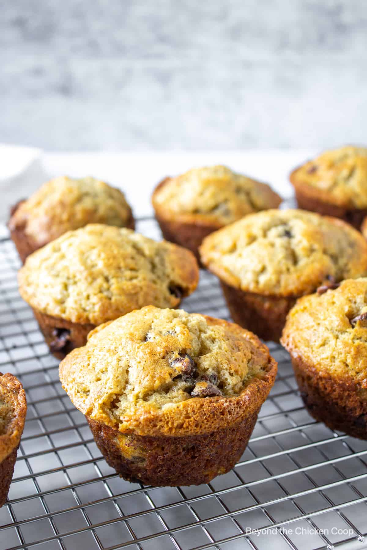 Muffins lined up on a baking rack.