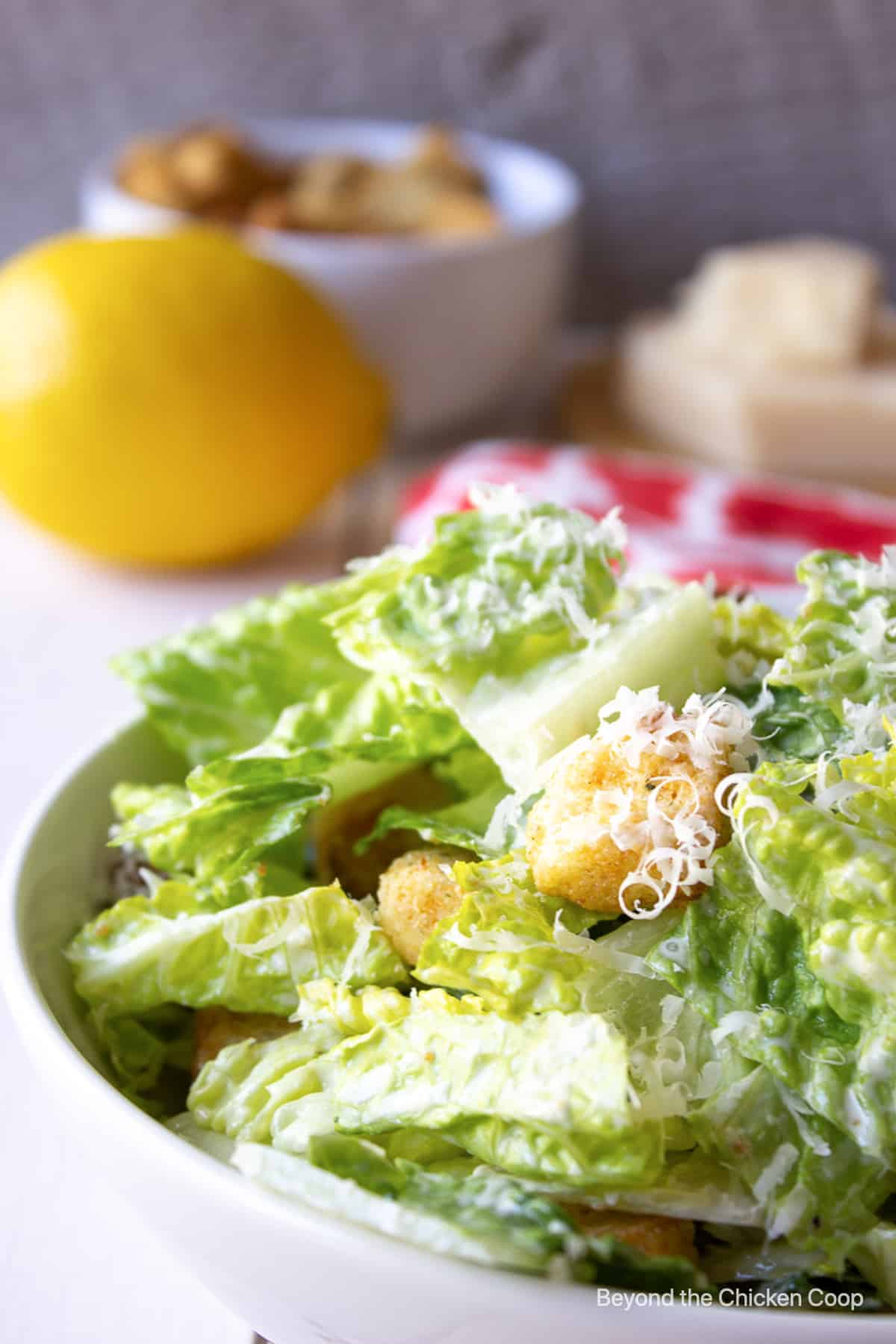 A green salad with croutons and shredded cheese in a white bowl.