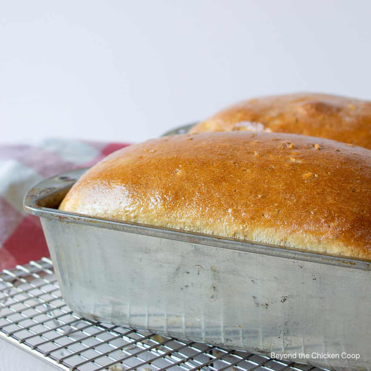 Two loaves of cooked bread in a metal bread pan.