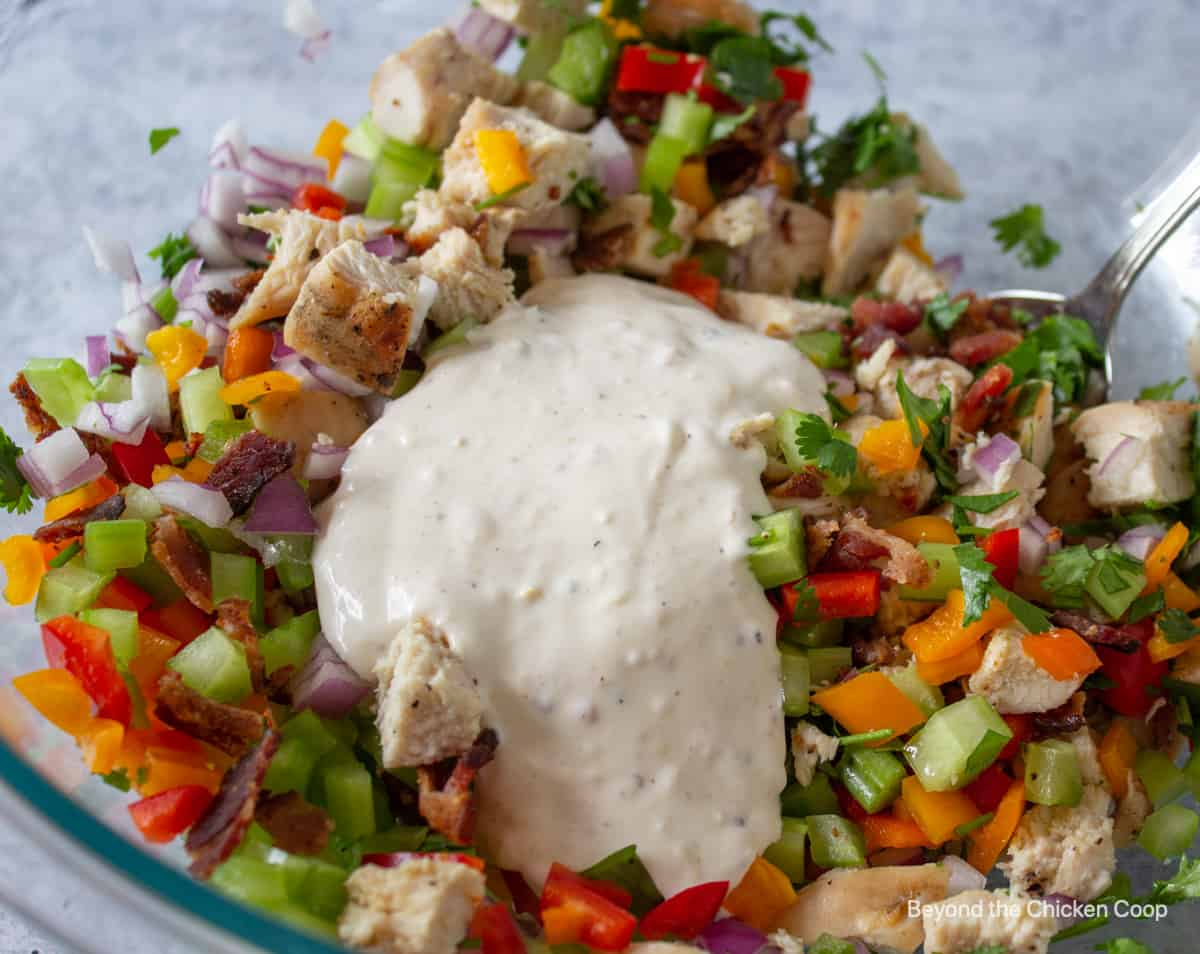 Salad dressing on top of a chopped chicken and vegetable mixture.