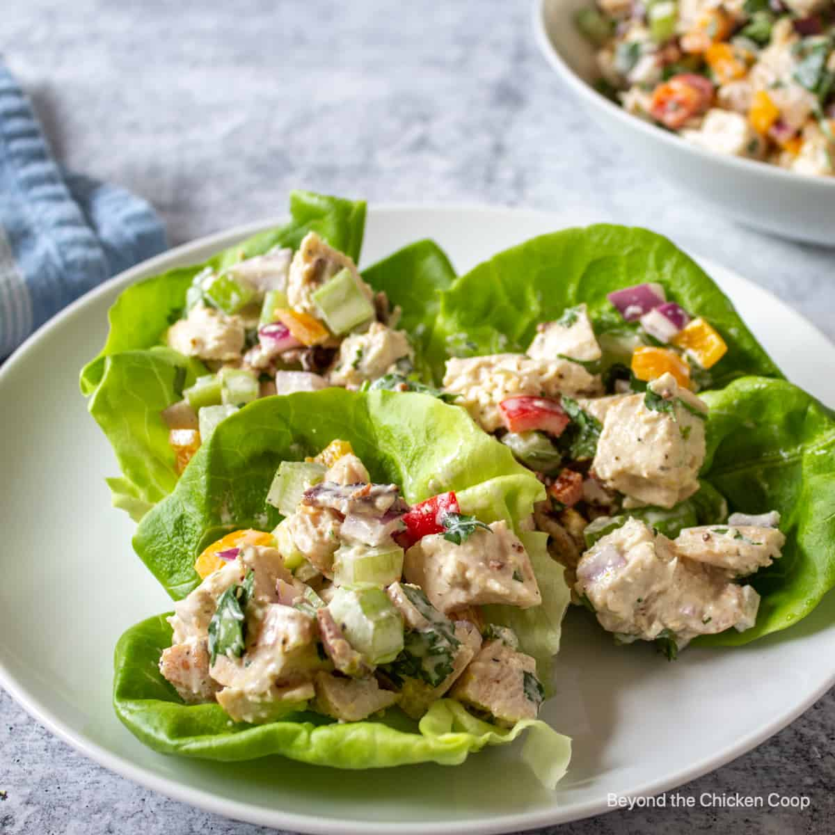 Lettuce wraps filled with chicken salad.