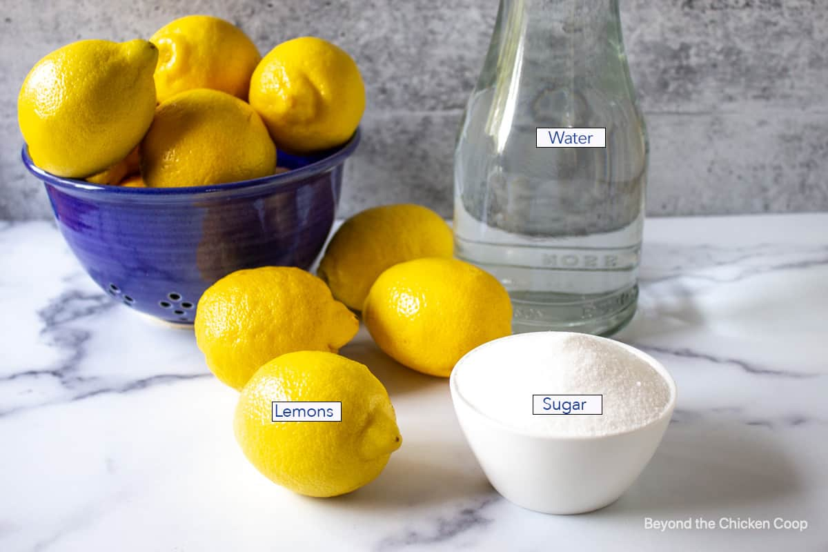 Fresh lemons next to a small white bowl filled with sugar.