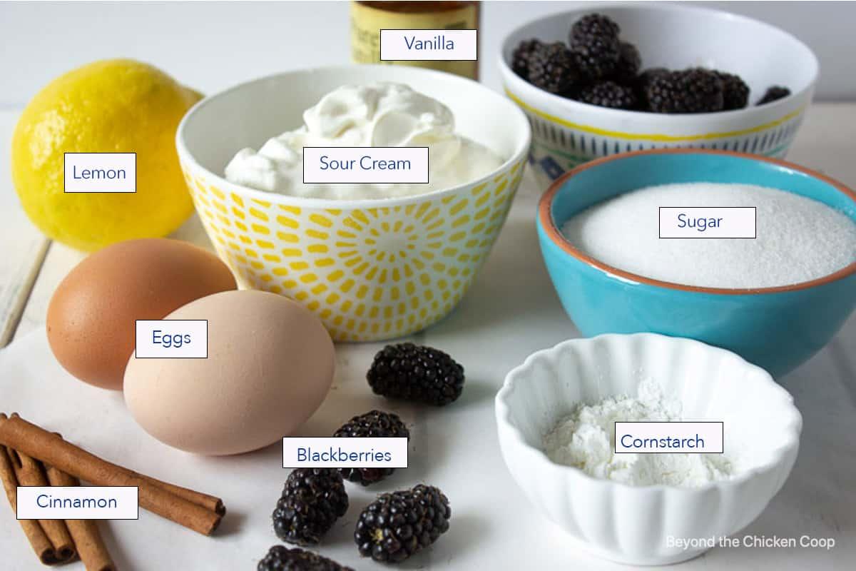 Ingredients displayed for making blackberry bars.
