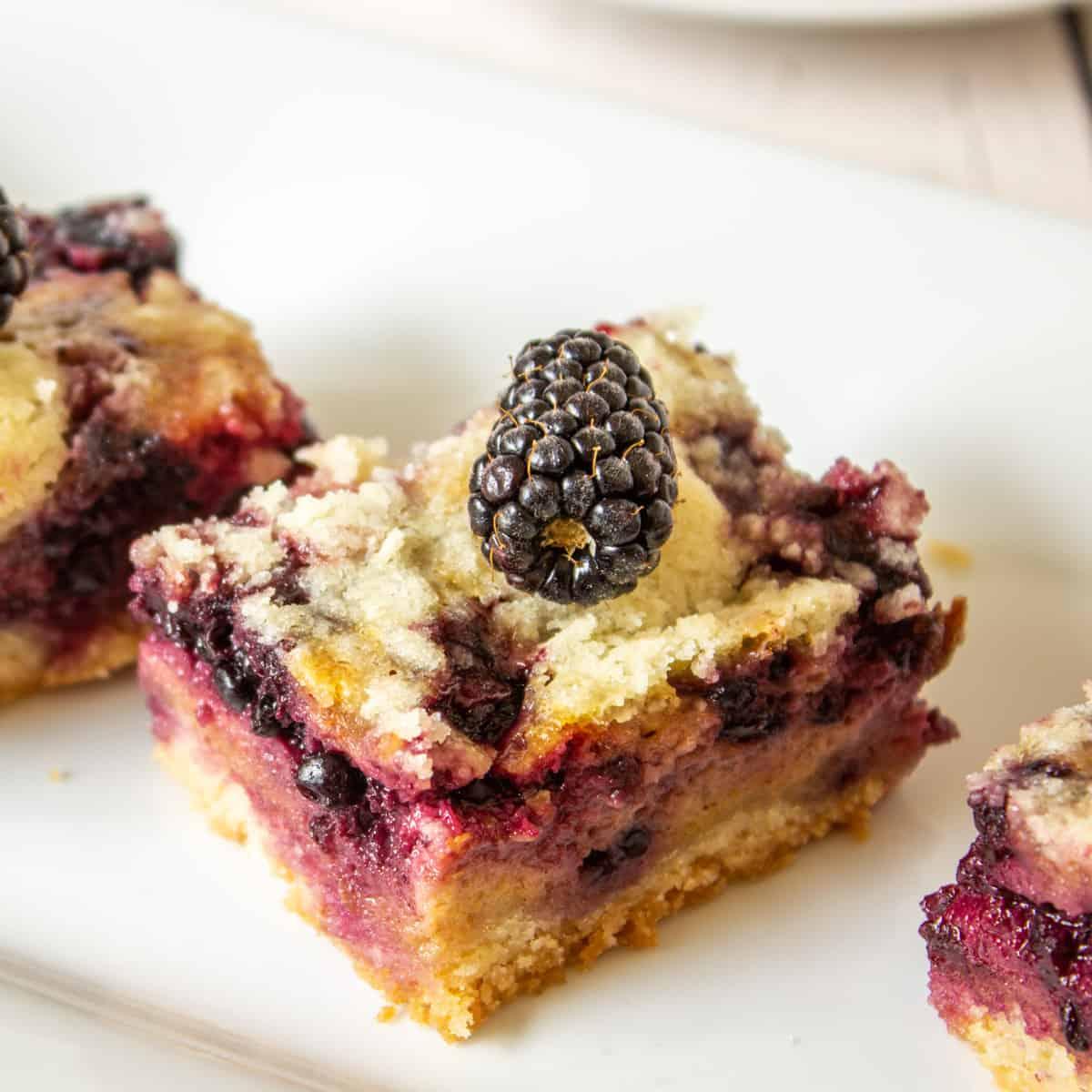 A dessert bar filled with blackberries.