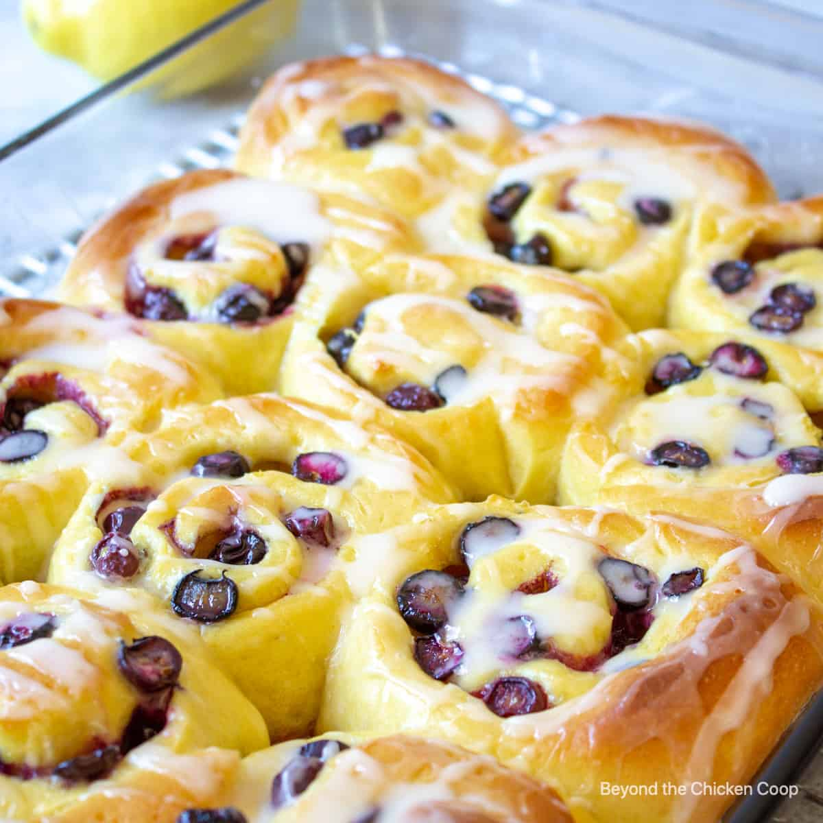 A pan filled with blueberry sweet rolls.