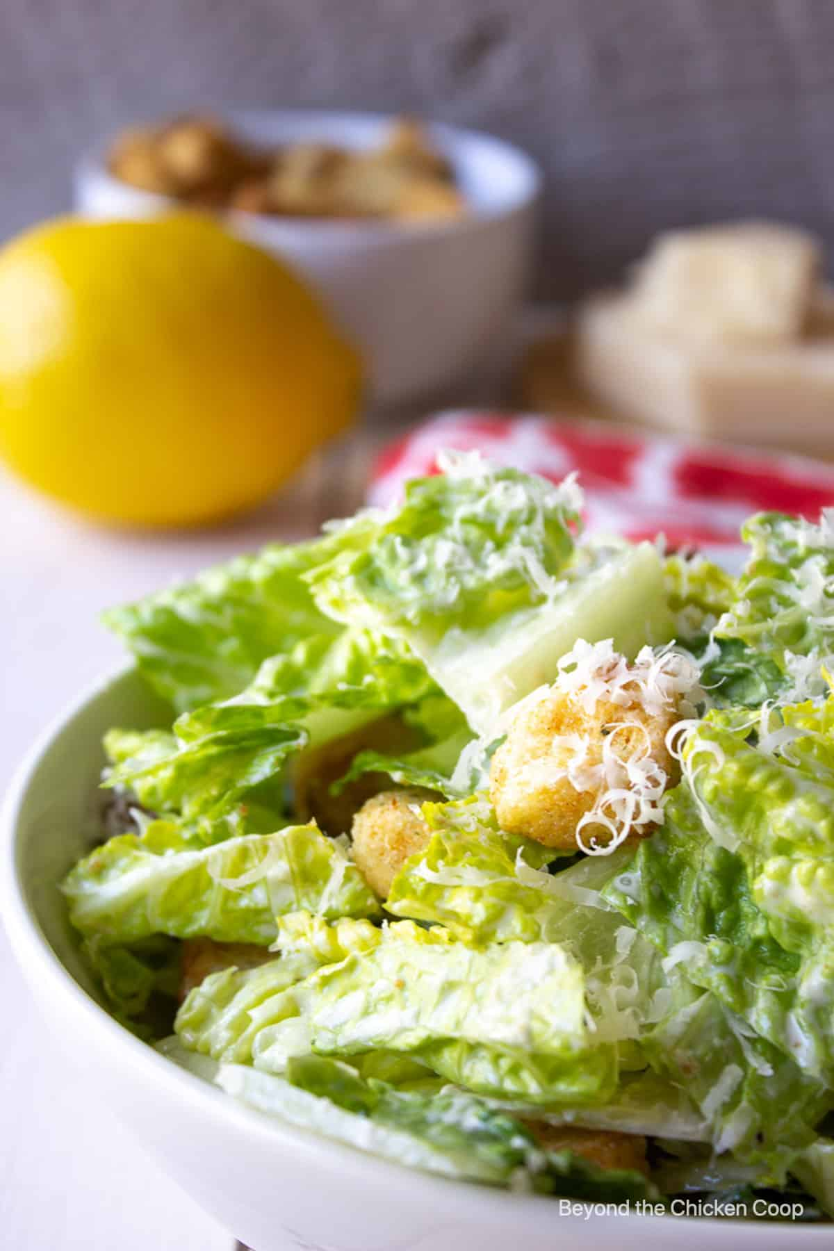 A green salad topped with cheese and croutons in a white bowl.