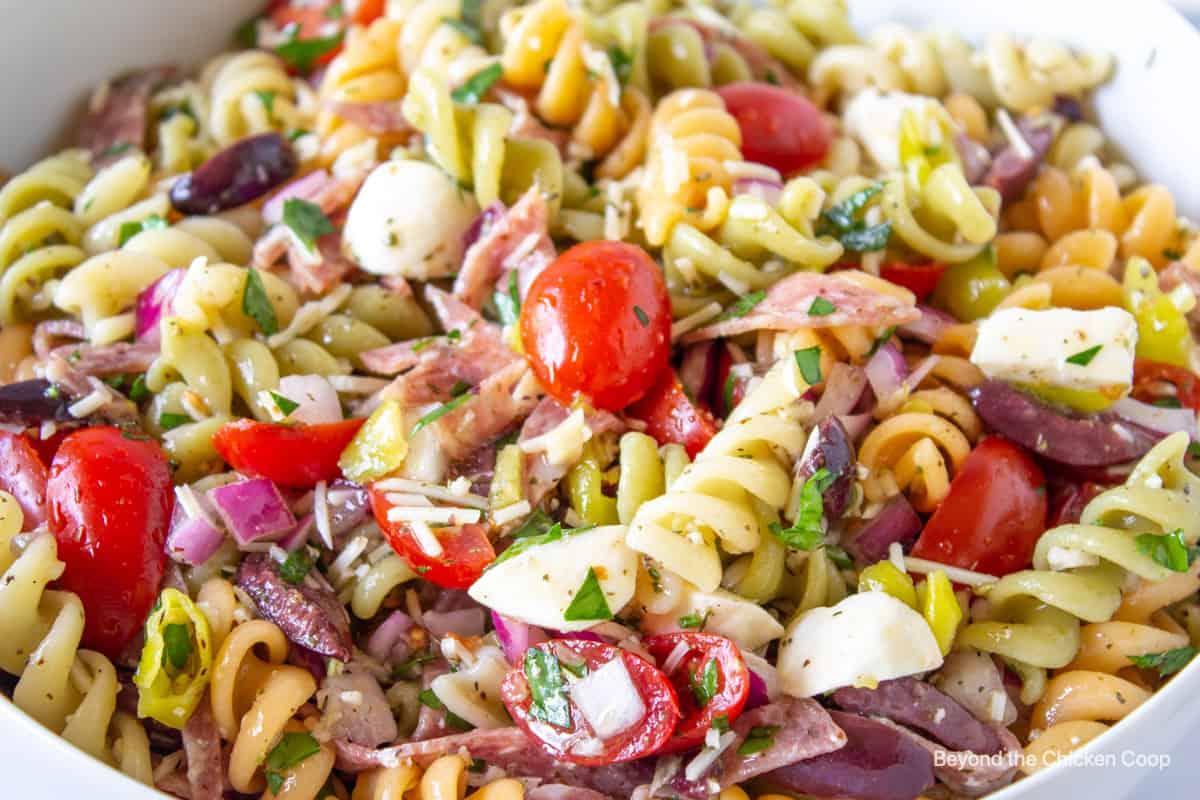 A closeup shot of a pasta salad with tomatoes and mozzarella cheese.