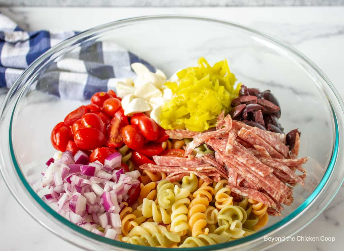 A bowl filled with pasta, tomatoes, onions and salami.