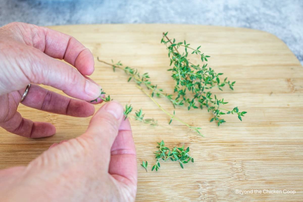 Removing thyme leaves from the stem.