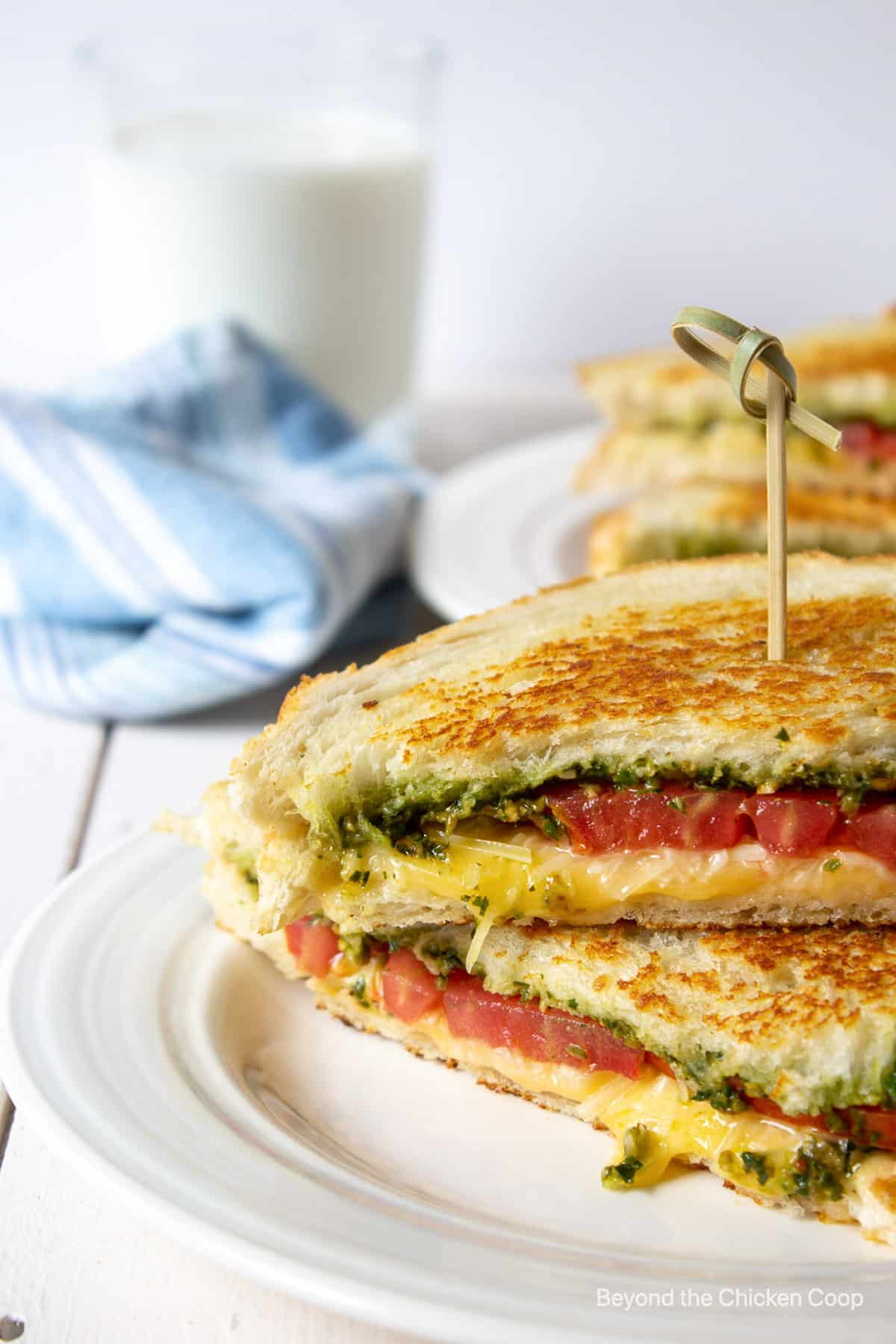 A grilled sandwich with tomatoes and pesto.
