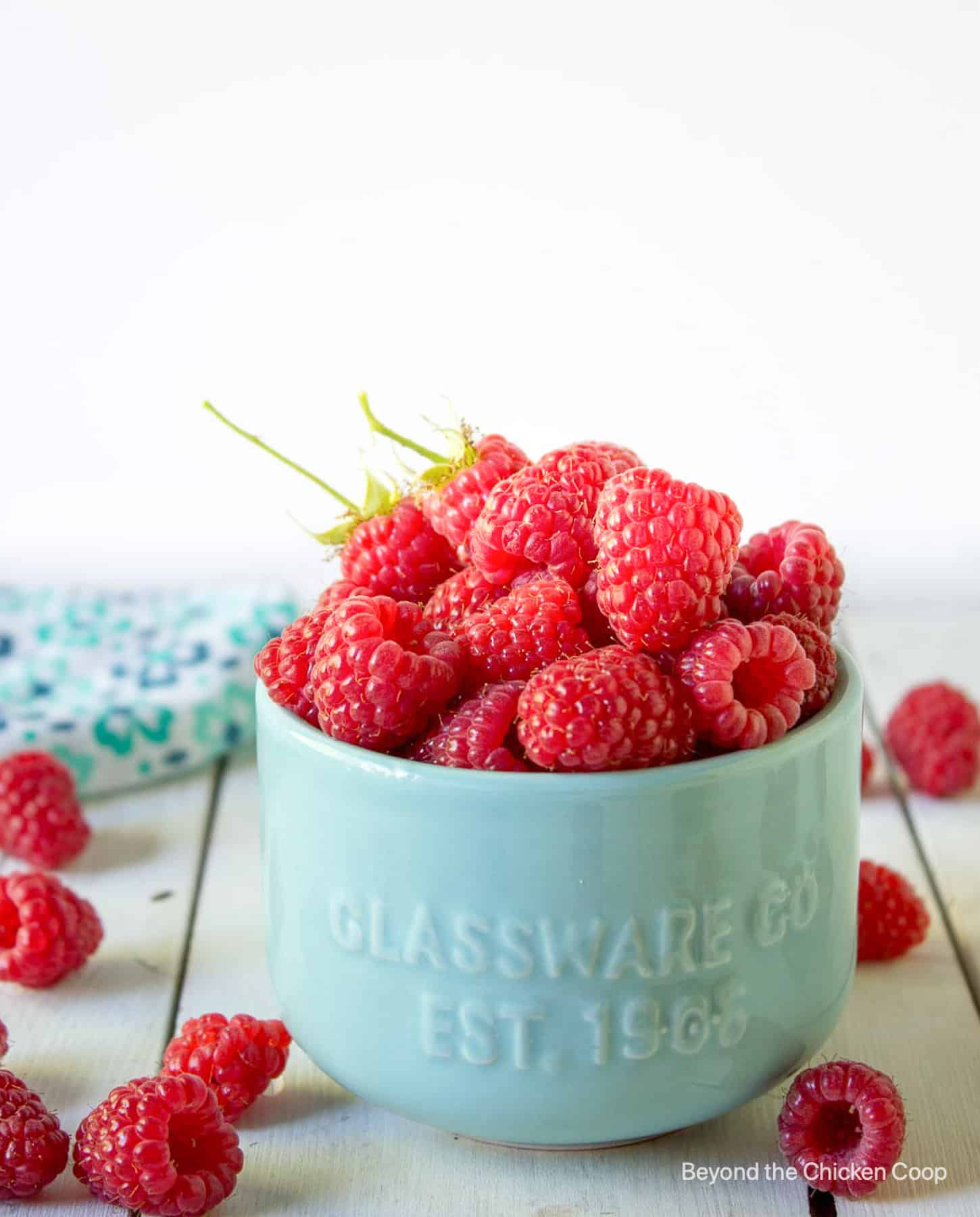 A small bowl filled with fresh raspberries.