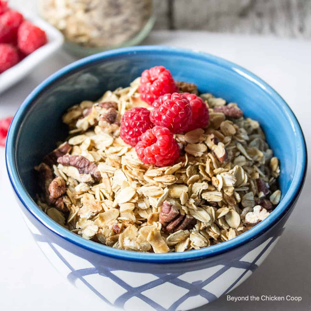 Granola with pecans and topped with fresh raspberries.