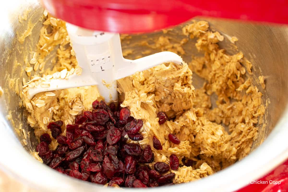 Dried cranberries in a bowl with cookie dough.