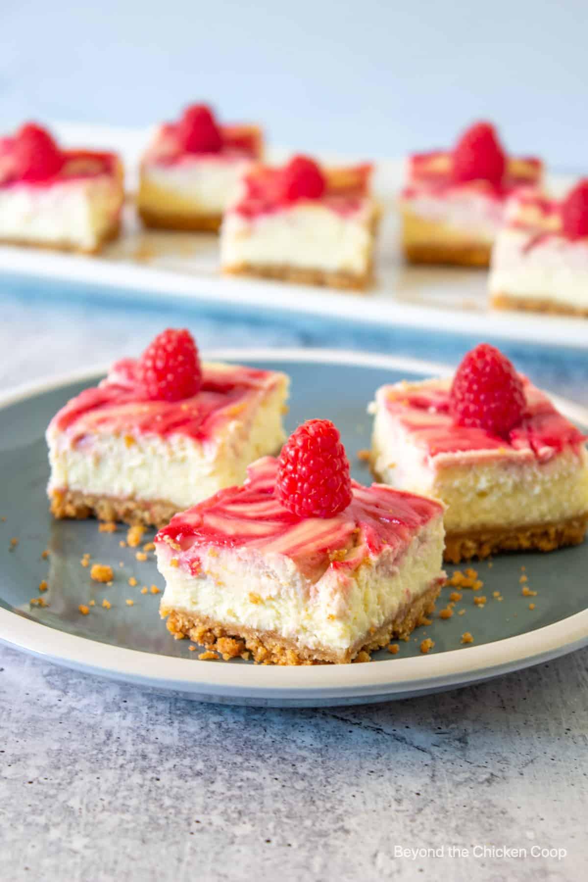 Three cheesecake bars topped with fresh raspberries.