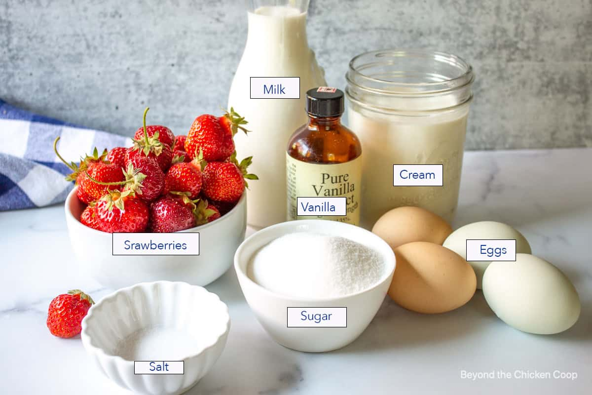 Ingredients for making strawberry ice cream.