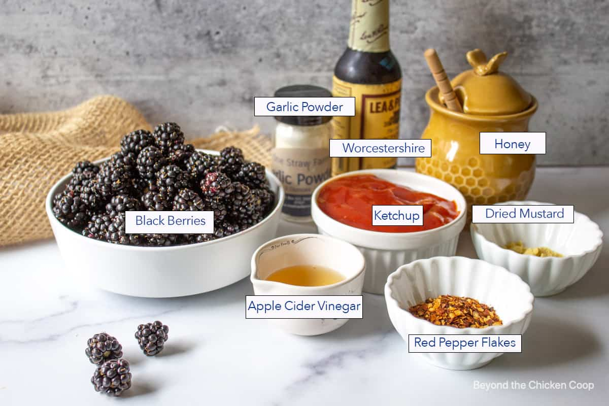 Ingredients for making a barbecue sauce with fresh blackberries.