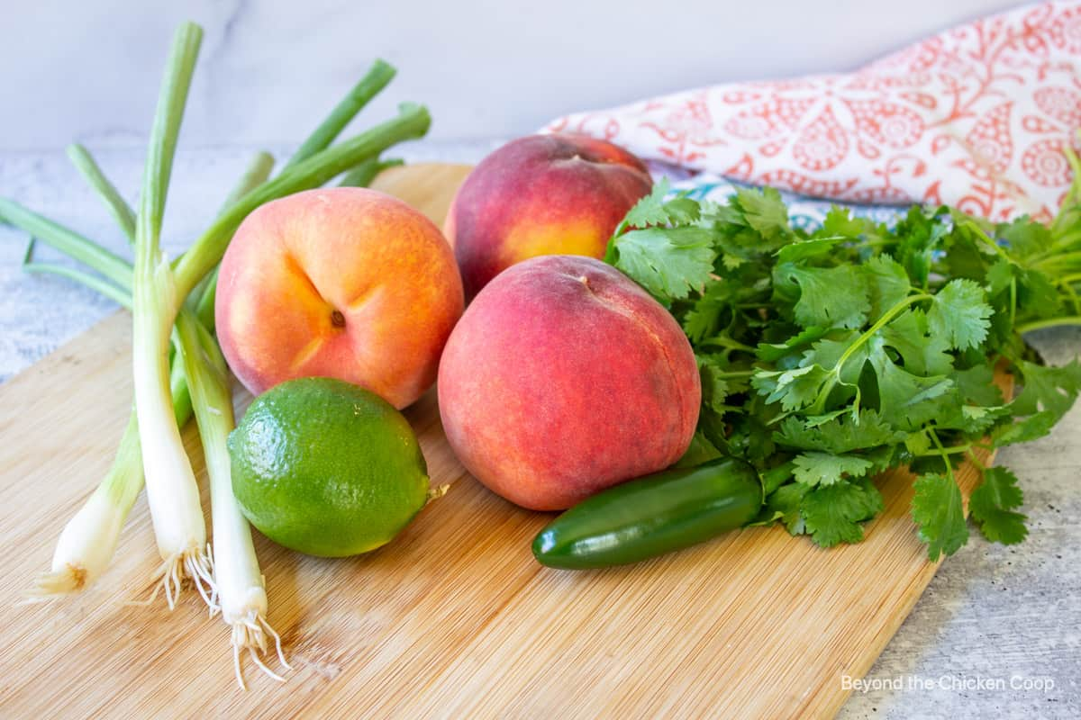 Ingredients for making salsa with peachees.