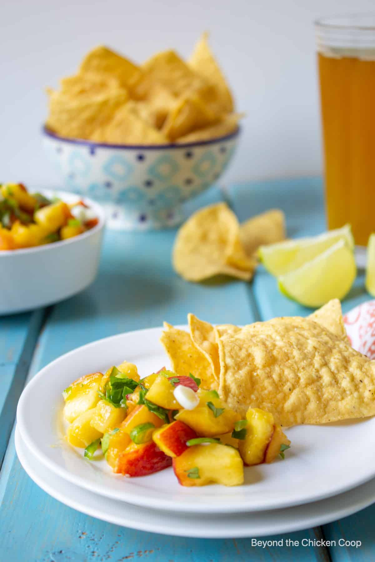 Fresh fruit salsa with corn chips.